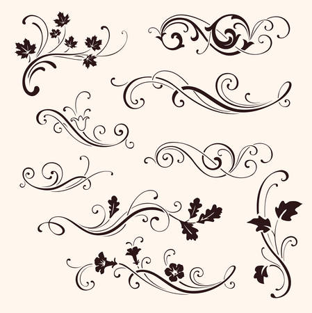 Set of calligraphic floral elements