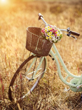 Foto de Vintage bicycle with basket full of flowers standing in the field - Imagen libre de derechos