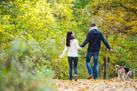 Foto de Beautiful young couple with dog on a walk in colorful sunny autumn forest, rear view - Imagen libre de derechos
