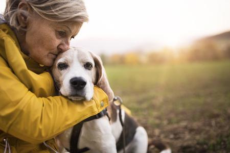 Foto de Senior woman with dog on a walk in an autumn nature. - Imagen libre de derechos
