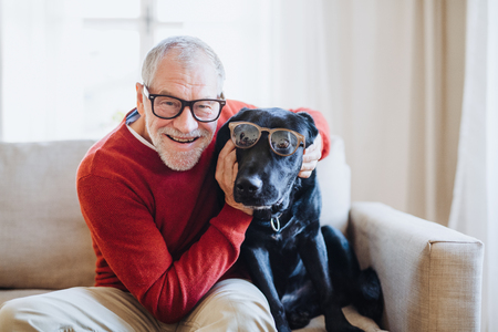 Photo pour A senior man sitting on a sofa indoors with a pet dog at home, having fun. - image libre de droit