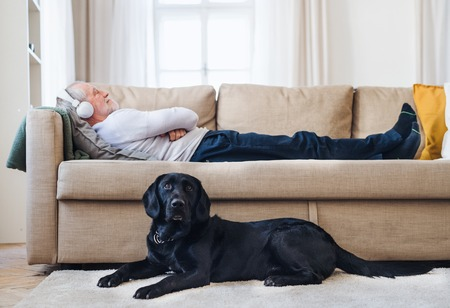 Photo pour A happy senior man lying on a sofa indoors with a pet dog at home, listening to music. - image libre de droit