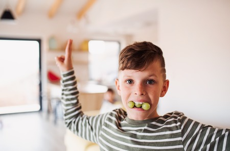 Photo for A portrait of small boy eating grapes indoors, having fun. Copy space. - Royalty Free Image