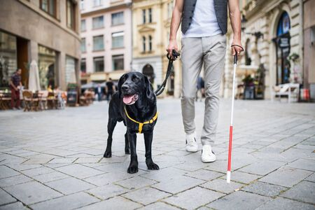 Photo pour Unrecognizable young blind man with white cane and guide dog in city. - image libre de droit