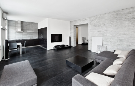 Modern Minimalism Style Drawing Room Interior In Black And White