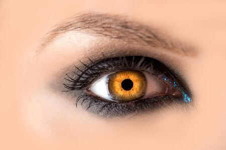 Photo pour Mystic amber eye, witch witchcraft concept, fairy-tale look, fairy or young woman with beautiful make-up and yellow colored lenses for eyes. Cosmetics for make-up eyes. Open eye, Halloween. - image libre de droit