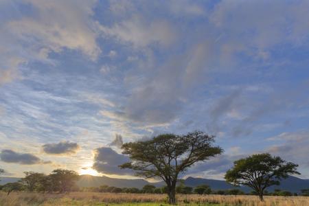 Bushveld sunrise with clouds