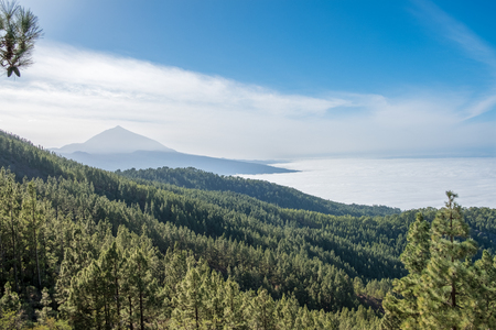 Peak of the mountain and sea of clouds, Tenerife