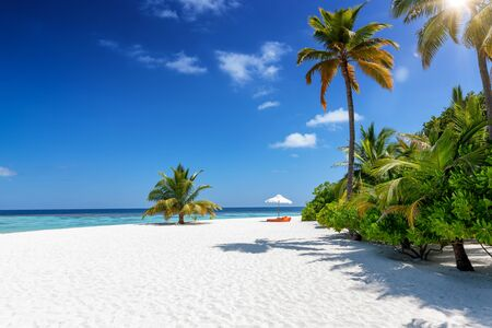 Photo pour One single sunbed and umbrella at a tropical paradise beach with coconut palm trees, fine sand and turquoise sea, Maldives - image libre de droit