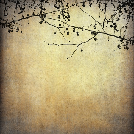 Grunge paper background with dried tree shape