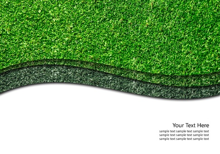 Green grass isolated with curve white line