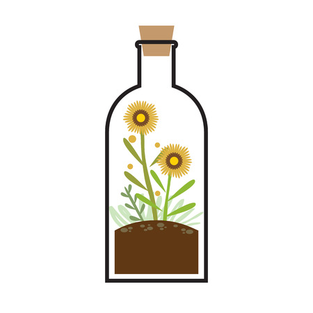Little Tree In A Bottle Vector Illustration