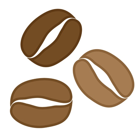 vector coffee grains