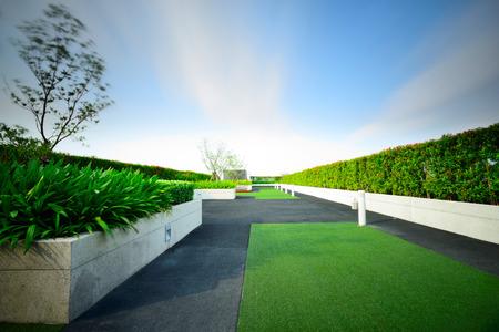 Landscape of garden on rooftop