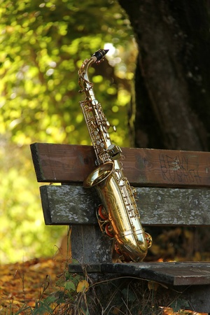 old grungy saxophone in the nature in autumn