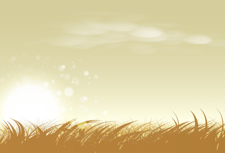 Illustration pour Landscape rural sunset, rice and grass farm vector illustration. agriculture, outdoor and nature concept. Poster abstract background in horizontal - image libre de droit