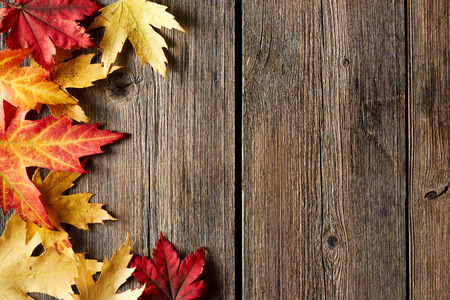 Autumn maple leaves over old wooden background with copy spaceの写真素材