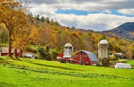 Foto per Farm with red barn and silos at sunny autumn day in West Arlington, Vermont, USA - Immagine Royalty Free