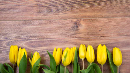 Photo pour Bouquet of yellow tulips on a wooden background. Spring flowers. Mother's Day background. - image libre de droit