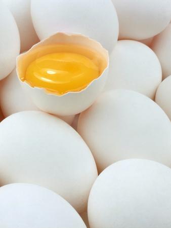 Eggs and egg yolk