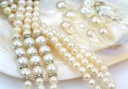 Photo pour Pearl necklace with natural pearls in a oyster shell - image libre de droit