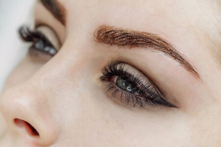 Photo for Result of permanent makeup, tattooing of eyebrows in beauty salon - Royalty Free Image