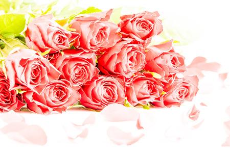 Foto de A Red roses for love - Imagen libre de derechos
