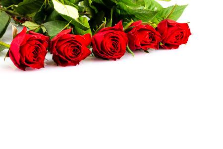 Photo pour A Red roses for love - image libre de droit