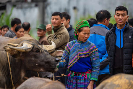Local People of the Bac Ha Market in Vietnam, November 10, 201