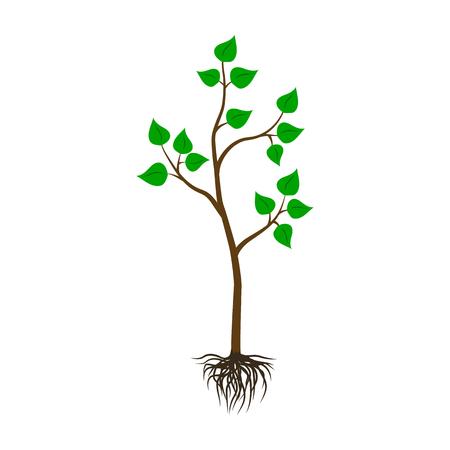Illustration pour Seedling tree flat icon. - image libre de droit