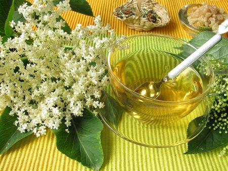 White elder blossoms tea