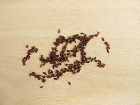 Psyllium seeds, semen Psyllii