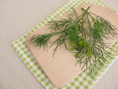 Fresh dill leaves