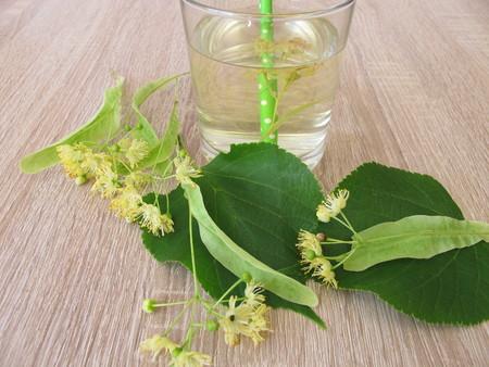 Homemade lemonade with fresh tilia flowers