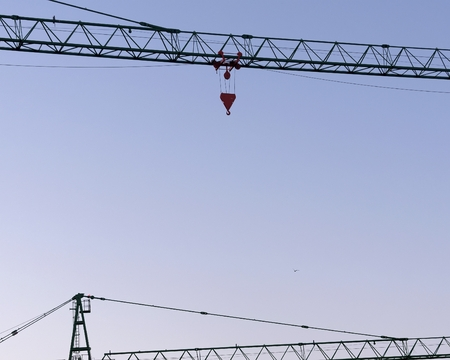 Two cranes on background of early morning sky