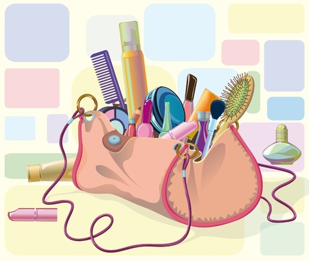 handbag filled with objects of his care and cosmetics. Objects do not cut to form bags, can be used separately