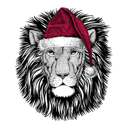 Photo pour Christmas illustration Wild animal wearing christmas santa claus hat Red winter hat Holiday picture Happy new year - image libre de droit