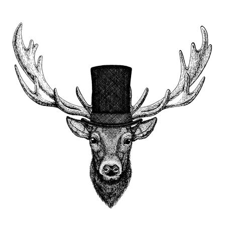 Illustration pour Wild animal wearing top hat, cylinder. Hipster deer - image libre de droit