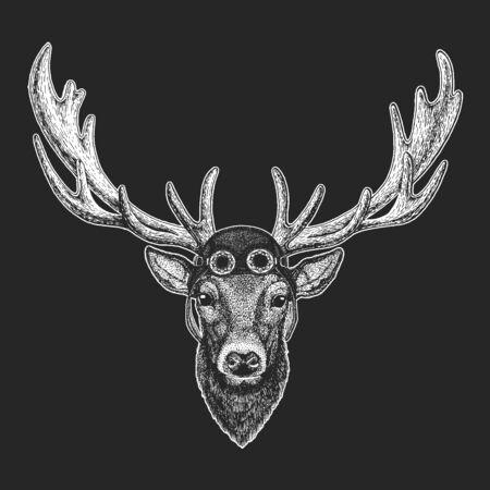 Illustration for Deer portrait. Aviator leather helmet. Head of wild animal. - Royalty Free Image