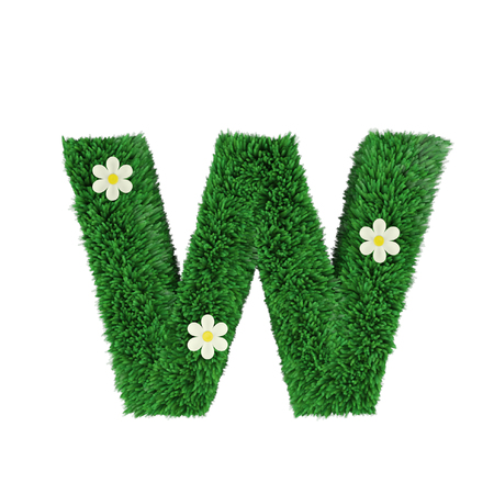 grass letter W isolated on white. 3d render