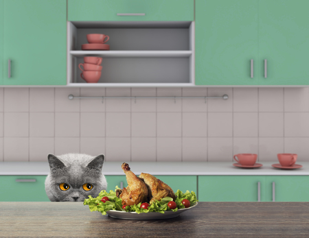 Cute cat is going to eat some chiken from the table. 3d render