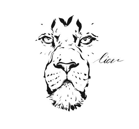 Illustration for Hand drawn vector abstract artistic ink textured graphic sketch drawing illustration of wildlife lion head isolated on white background. - Royalty Free Image