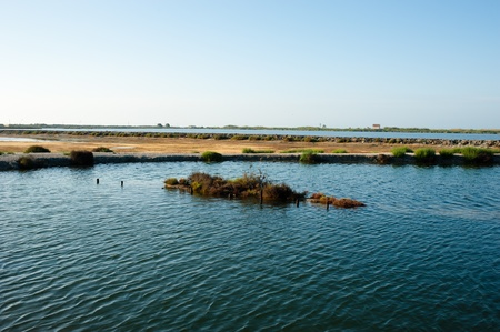 Mediterranean salt marsh early morning, Santa Pola,  Spain