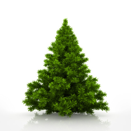 Photo for Green christmas tree isolated on white background - Royalty Free Image