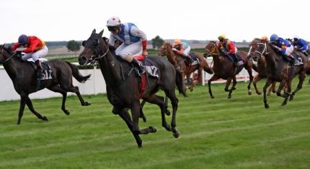 Photo pour Horse Race 01 - image libre de droit