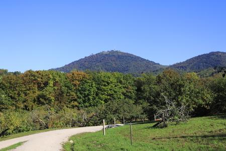 Hikersmurf181100016