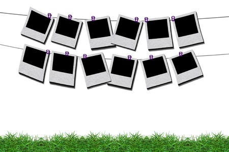 isolated sign board in green grass frame