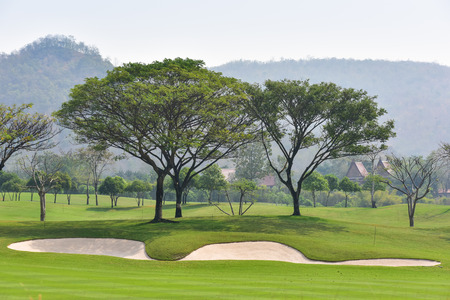Sand Bunkers And Trees Wallpaper Mural