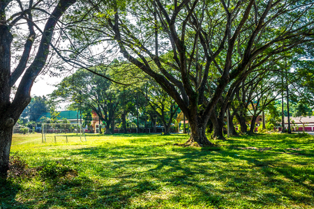 Public playing ground  in some place surrounded by tropical plants.