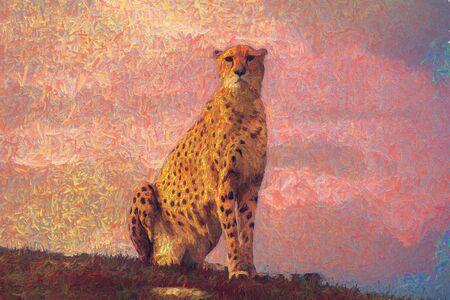 Foto de Cheetah sitting - Imagen libre de derechos